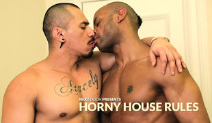 Horny House Terms